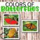 Color sorting cards: colors of butterflies