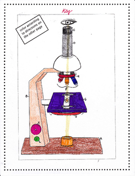Microscope Label and Color Page