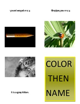 Color then Name Booklet or Flashcards for Autism