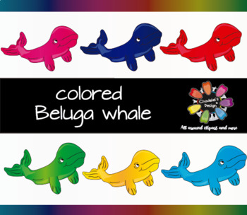Colored Beluga Whale