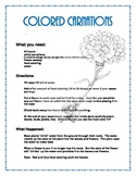 Colored Carnations- Fun Science Activity