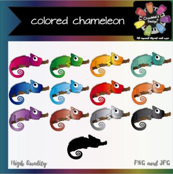 Colored Chameleon