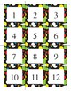 Math & Number Cards (Colored Dots)
