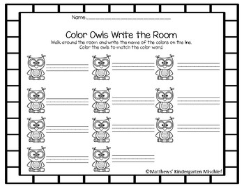 Colored Owl Write the Room