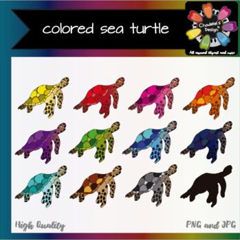 Colored Sea Turtle