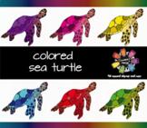 Colored Sea Turtle