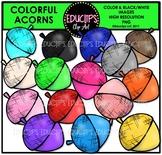Colorful Acorns Clip Art Bundle {Educlips Clipart}