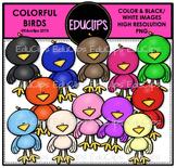 Colorful Birds Clip Art Bundle {Educlips Clipart}