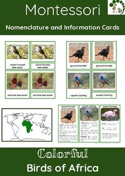 Colorful Birds Of Africa – Montessori Nomenclature And Inf