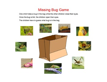 Colorful Bugs Shared Reading Book and SMARTboard Activities