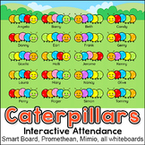 Colorful Caterpillars Theme Attendance Chart for All Interactive Whiteboards