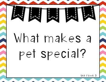 Colorful Chevron Wonders 1st Grade Essential Questions Units 1-6