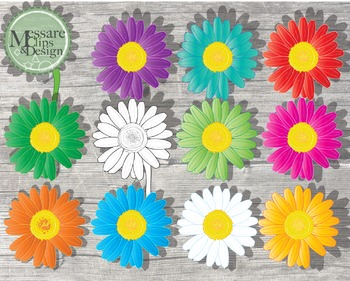 Colorful Daisy Flower Power Pack {Messare Clips and Design}