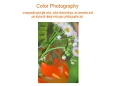 Colorful Digital Photography