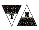 Colorful Dots on Dots Black Pennants for Reading and Math
