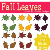 Colorful Fall Leaves Clipart Set