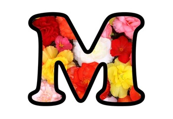 Colorful Flowers Bulletin Board Letters, Numbers and Symbols, Spring Decor Onam