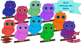 Colorful Owls - 10 Pack!
