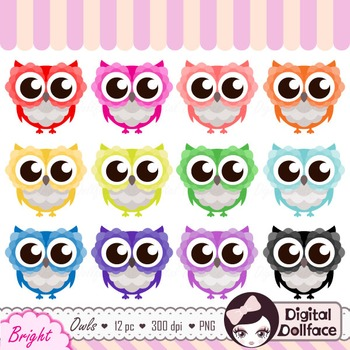Colorful Owls Clipart / Cute Animal Clip Art