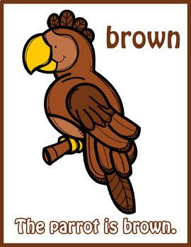 Colorful Parrots Flash Cards; Kindergarten; Preschool; Homeschool; Math
