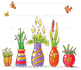 Colorful Vases with Flowers in a Row