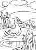 Coloring Book Animal Word Puzzles FREE