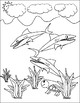 Coloring Book-Ocean Themed