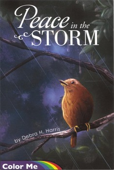 Coloring Book:  Peace in the Storm