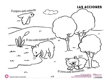 Action Verbs Coloring Pages Spanish
