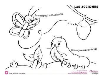Action Verbs Coloring Pages {Spanish}