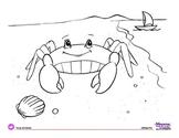 Coloring Page: Ocean Animals: Crab