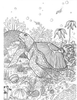 Coloring Page - Sea Turtle