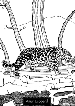 Coloring Pages Critically Endangered Cats By Original Designs By Jason
