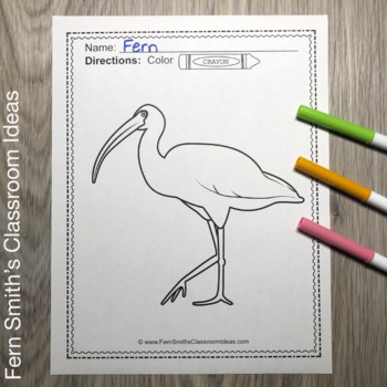 Florida Everglades Coloring Pages Dollar Deal