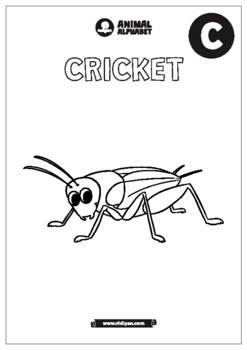 Animals - Coloring Workbook Printable