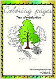 Coloring pages Trees/Arboles English-Spanish