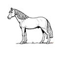 Coloring pages early vocabulary