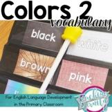 Colors 2 Vocabulary Unit