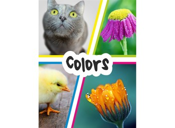 Colors Flashcards with Vocabulary