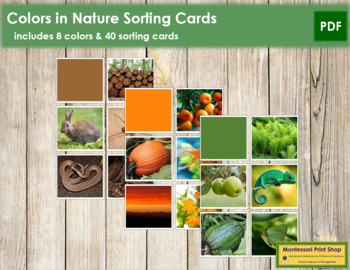 Colors In Nature Sorting Cards