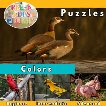 Colors (Puzzle Printables of colorful birds)