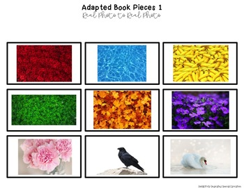 """Colors Real Photo """"I See"""" Book for Special Education Classrooms"""
