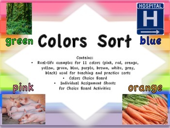 Colors Sort and Choice Board