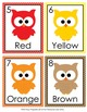 Colors Write the Room Activity