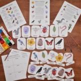 Colors in Nature Pack: beginner colors unit - printable ac