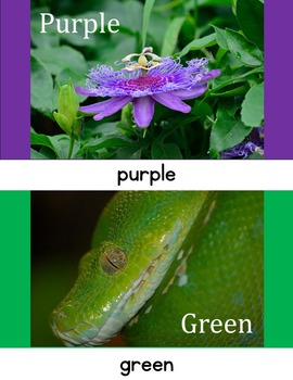 Colors in Photos / Interactive Vocabulary Lessons / Color Words
