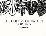 Colors of Nature Sorting Task