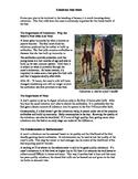 Colostrum Fact Sheet