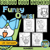Colour By Numbers Funky Owls Know Your Numbers UK Version