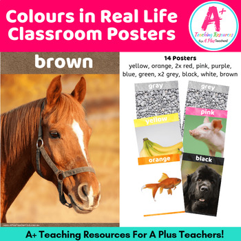 Colour Words Posters {Colors In Real Life}